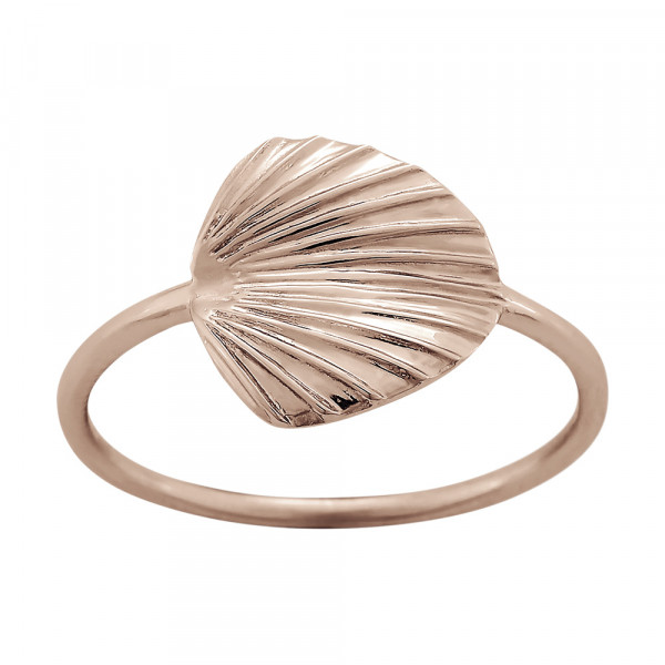 Damen Ring LICUALA 12mm